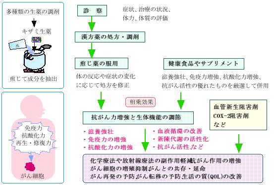 漢方がん治療の流れ(イメージ)